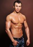 模型肌肉 免版税库存图片