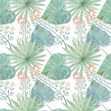 模式无缝热带 在白色背景的绿色棕榈叶 免版税库存照片