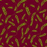模式无缝的向量 柔和的自然花卉时髦的backgroun 库存照片