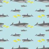 模式无缝的鲨鱼 皇族释放例证
