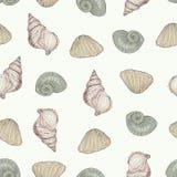 模式无缝的贝壳 免版税图库摄影