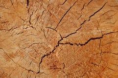 模式木头 免版税库存照片