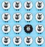 模式绵羊 库存图片