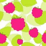 模式莓 免版税库存照片