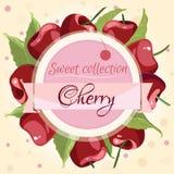 模板横幅 红色樱桃,与文本的丝带 免版税库存图片