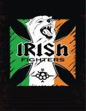 模板爱尔兰人战斗机 库存图片