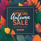 模板设计秋天季节的折扣横幅 特别秋天销售的海报与花和草本,秋季叶子 库存例证