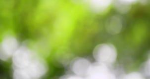 模糊的五颜六色的抽象背景 免版税库存图片