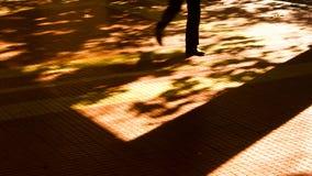 模糊的秋天城市阴影和剪影 免版税库存图片