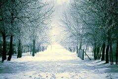 横向下了雪冬天 库存图片