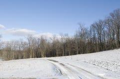 横向俄亥俄冬天 免版税库存照片