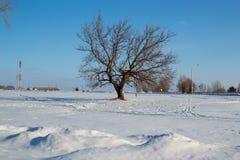 横向俄国冬天 巴什科尔托斯坦共和国共和国 免版税库存图片