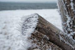 横向俄国冬天 免版税库存照片