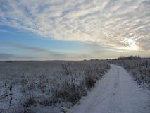 横向俄国村庄冬天 库存图片