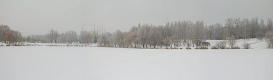 横向全景冬天 库存照片