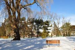 横向公园冬天 免版税库存图片