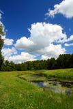 横向公园pavlovsk池塘 免版税库存图片