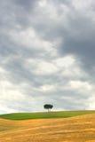 横向典型的托斯卡纳 免版税库存图片