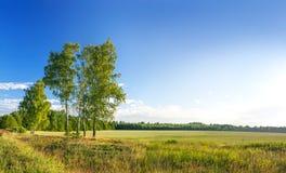 横向农村夏天 有日出的全景 免版税库存照片