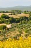 横向农村toscana 库存图片