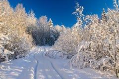 横向冬天木头 免版税库存照片