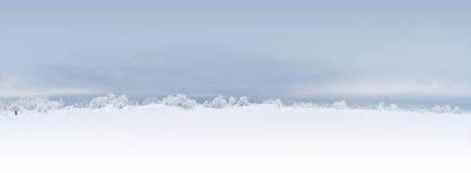 横向冬天 免版税库存图片