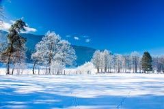 横向冬天 免版税图库摄影