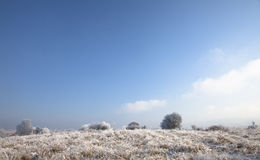 横向冬天 图库摄影