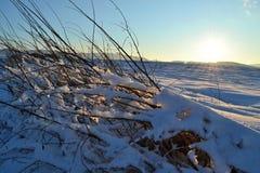 横向在日落冬天 库存照片