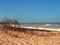 横向在海边 免版税库存图片