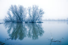 横向场面冬天 免版税库存照片