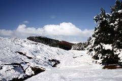 横向多雪的冬天 库存照片