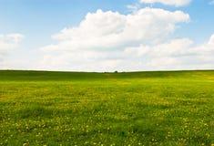 横向大草原天空 免版税图库摄影