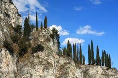 横向天空结构树 库存图片