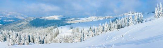 横向山全景冬天 免版税库存图片