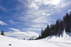 横向山多雪的冬天 免版税库存图片