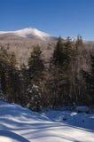 横向山白色冬天 免版税库存图片