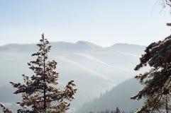 横向山晴朗的冬天 免版税库存图片