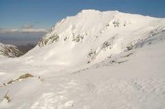 横向山retezat罗马尼亚冬天 免版税库存照片