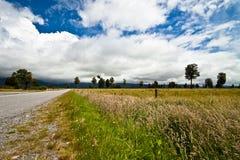 横向新的农村西兰 免版税库存图片