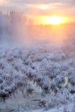 横向日落冬天 免版税图库摄影