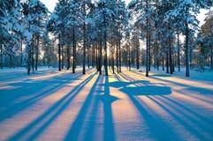 横向日落冬天 免版税库存照片