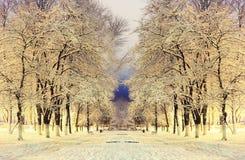 横向晚上人街道走的冬天 免版税库存图片