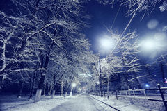 横向晚上人街道走的冬天 免版税图库摄影