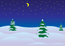 横向晚上冬天 库存例证