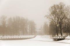 横向有薄雾的冬天 图库摄影