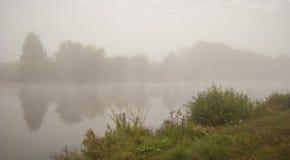 横向有薄雾的本质场面 库存照片