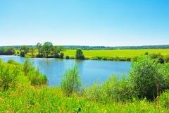 横向池塘夏天 免版税库存照片