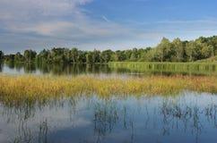 横向池塘 库存照片