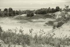横向沙丘 图库摄影